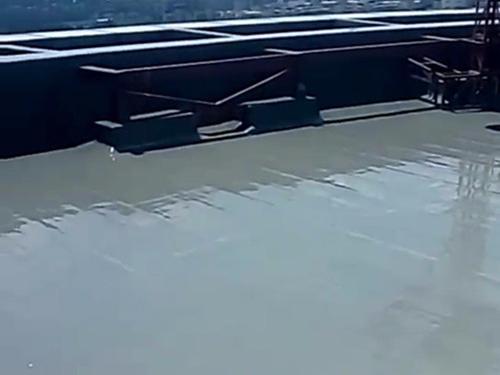 """鲁蒙公司-屋顶""""医生"""""""
